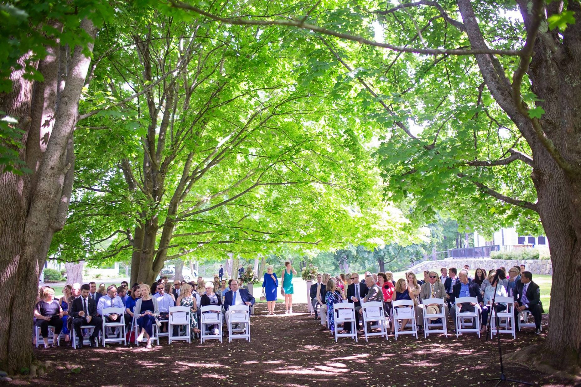 Ceremony Under the Three Maples