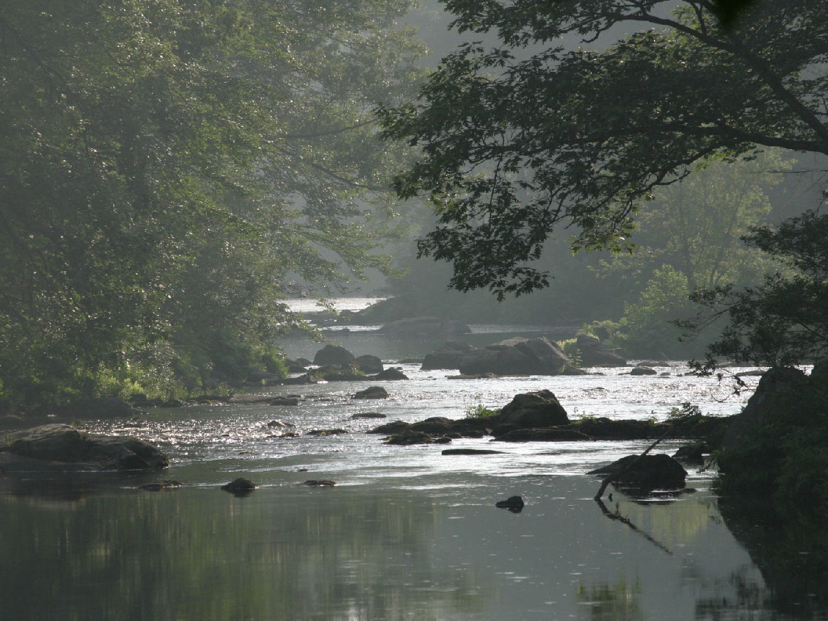 Hazy summer day on the Lamprey River