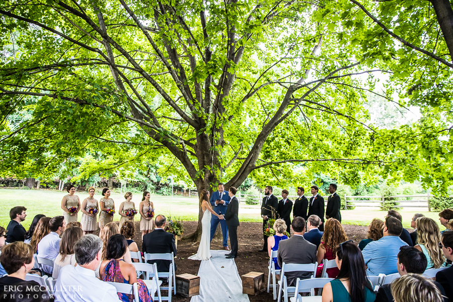 Vows Under the Trees